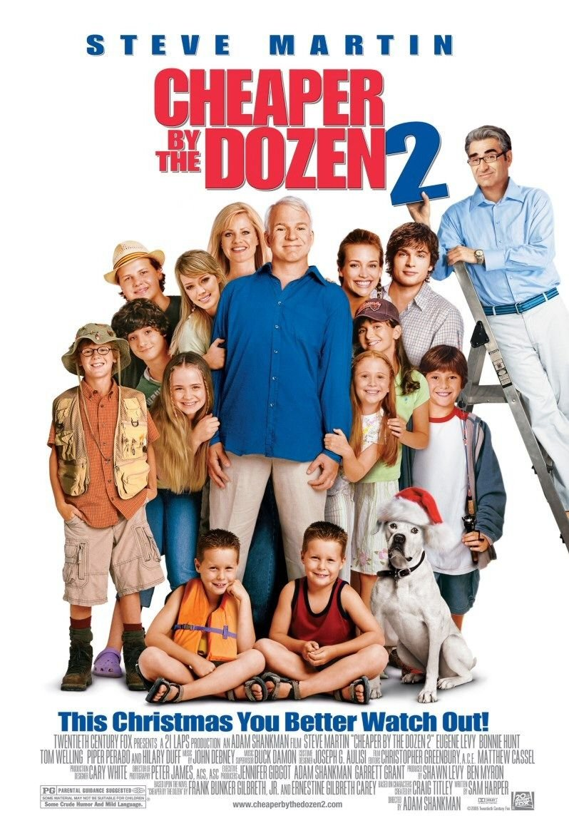 Cheaper by the dozen 2 2005 poster