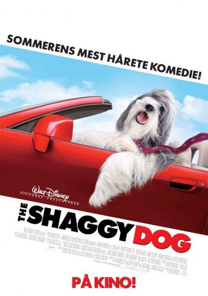 Shaggy Dog, The poster